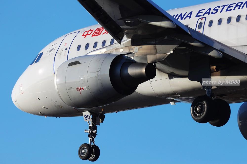 Re:[原创][DLC外场]这两天的大连是好天气 AIRBUS A319-100 B-8390 中国大连国际机场