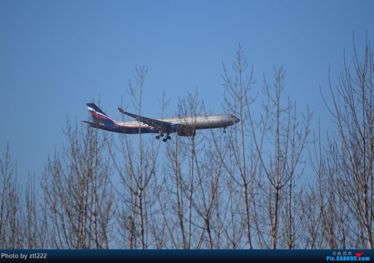 Re:[原创]【天天拍机1】正月15去PEK拍机,没白去,,稀货好货,,一起上 AIRBUS A330-300  中国北京首都国际机场