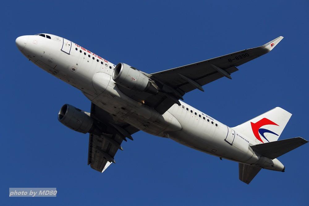 Re:[DLC外场]今天的天气不如左天 AIRBUS A319-100 B-8390 中国大连国际机场