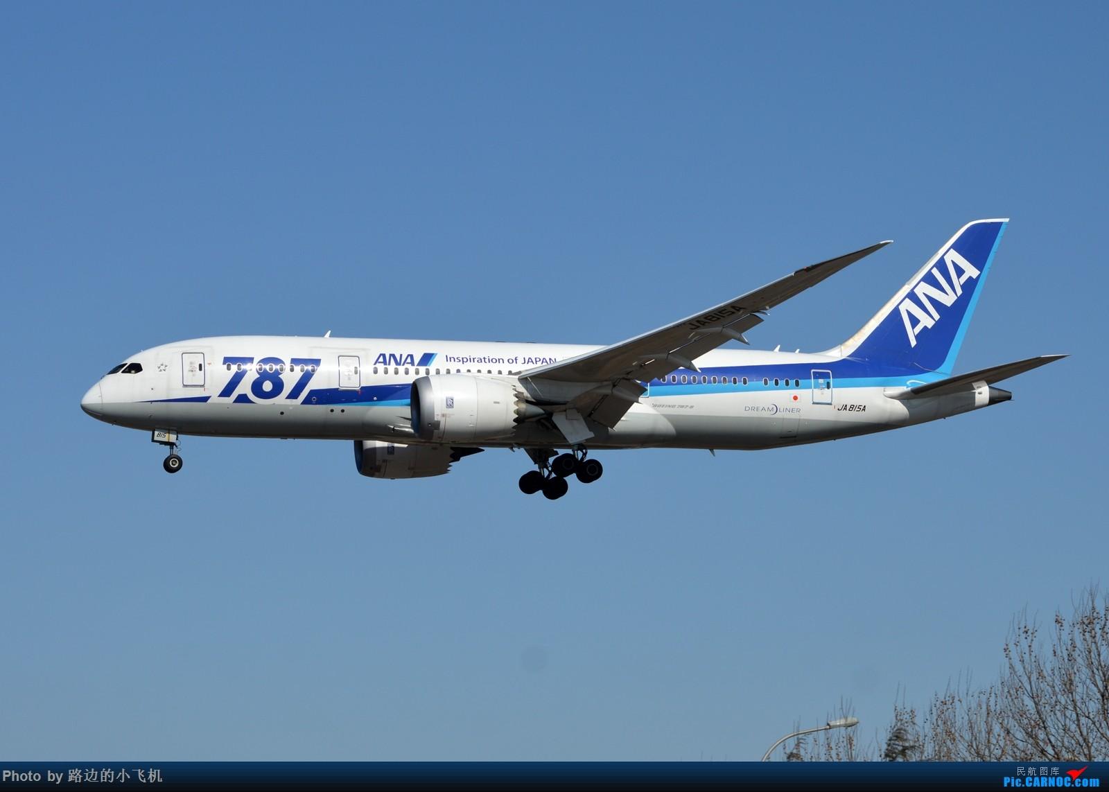 Re:[原创]【DLC】个人向一二月不定期拍机集锦 BOEING 787-8 JA815A 大连周水子国际机场