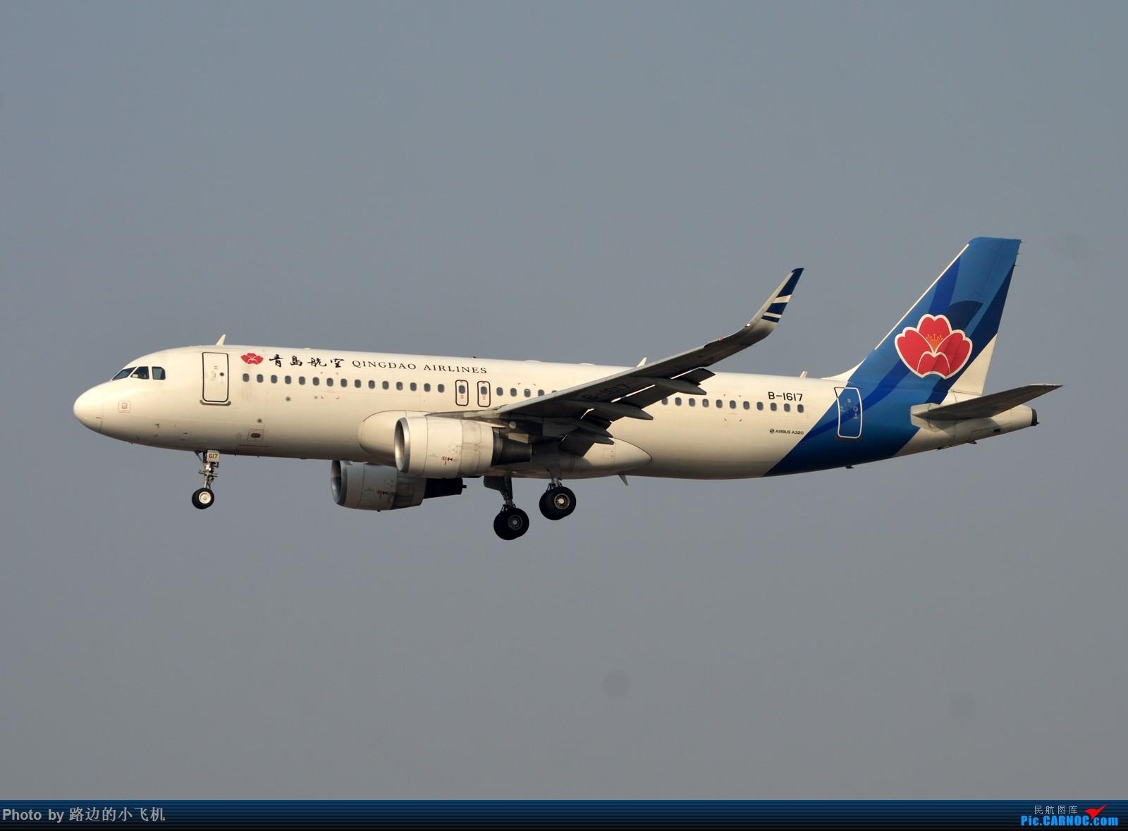 Re:[原创]【DLC】个人向一二月不定期拍机集锦 AIRBUS A320-200 B-1617 大连周水子国际机场