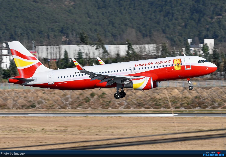 Re:[原创]【LJG+DLU】丽江、大理机场 AIRBUS A320-200 B-8445 中国丽江三义机场