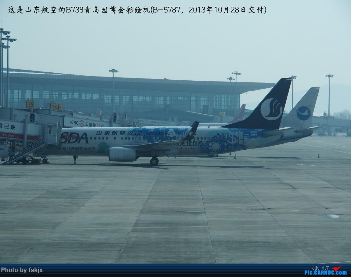 【fskjx的飞行游记☆43】一夜翡翠·沈阳 BOEING 737-800 B-5787 中国沈阳桃仙国际机场