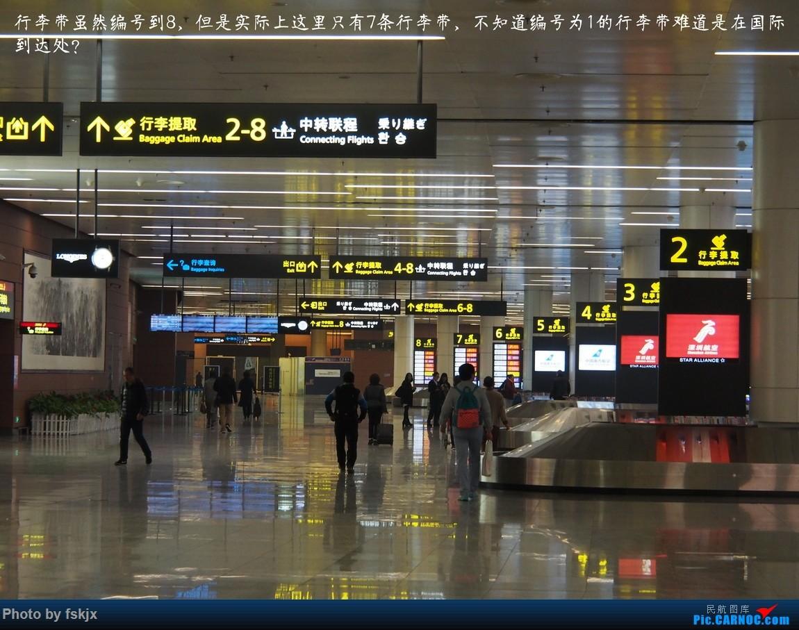 【fskjx的飞行游记☆43】一夜翡翠·沈阳 BOEING 737-800 B-5787 中国沈阳桃仙国际机场 中国沈阳桃仙国际机场