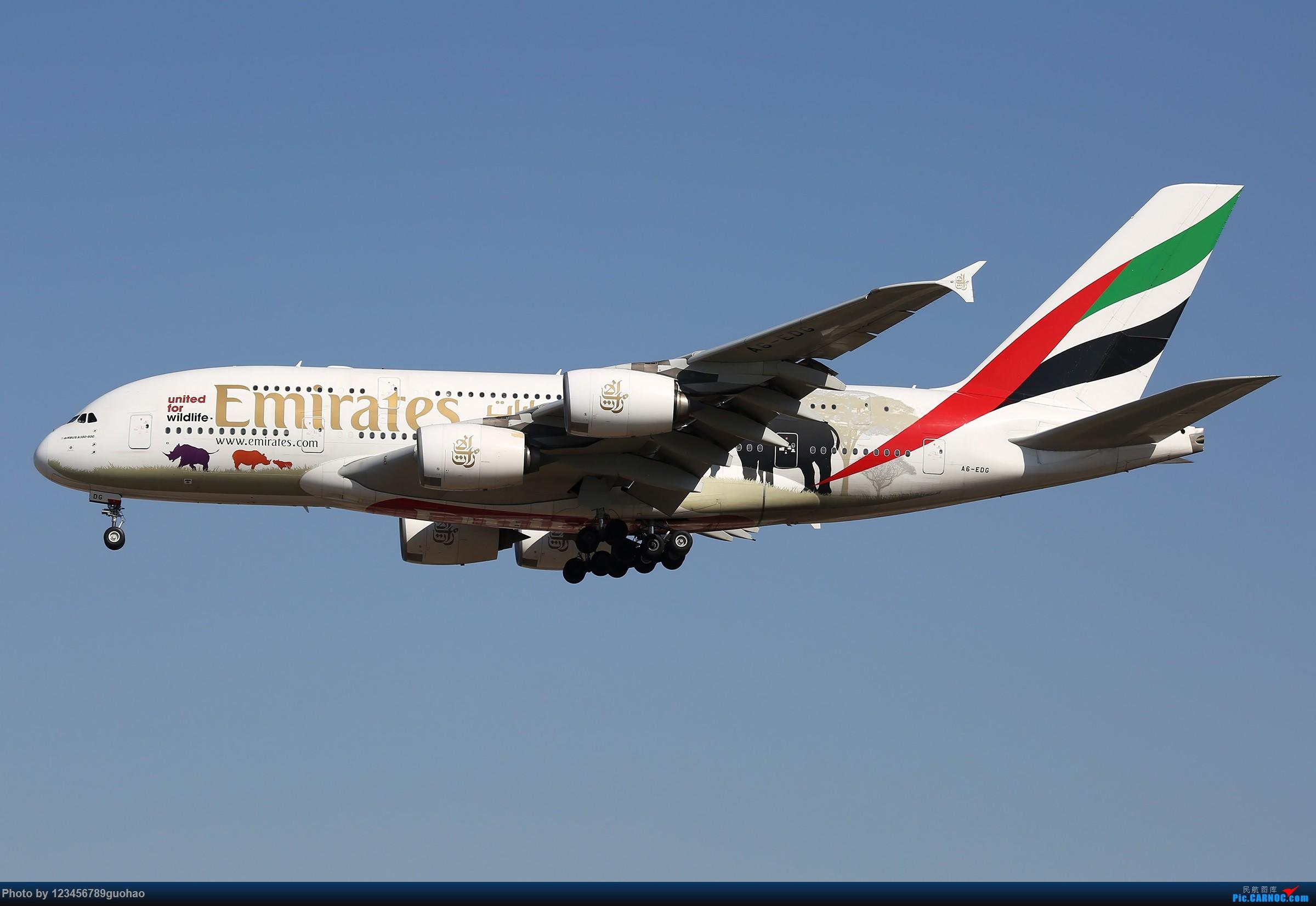 [原创]阿联酋保护野生动物 AIRBUS A380 A6-EDG 北京首都国际机场