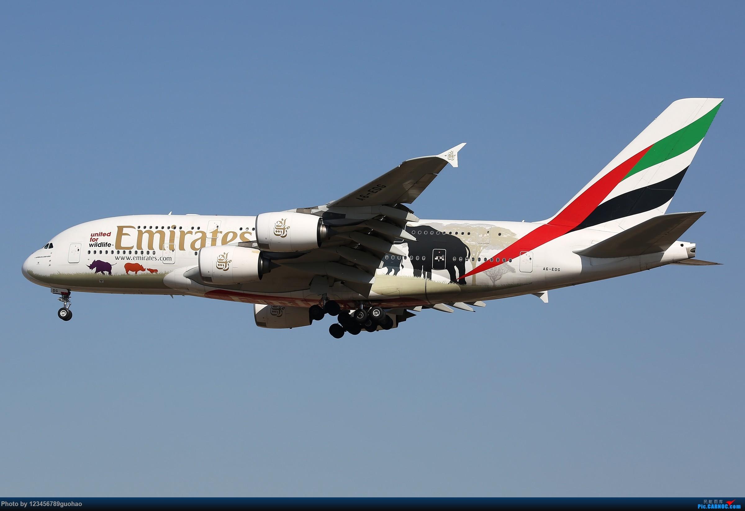 Re:[原创]阿联酋保护野生动物 AIRBUS A380 A6-EDG 北京首都国际机场