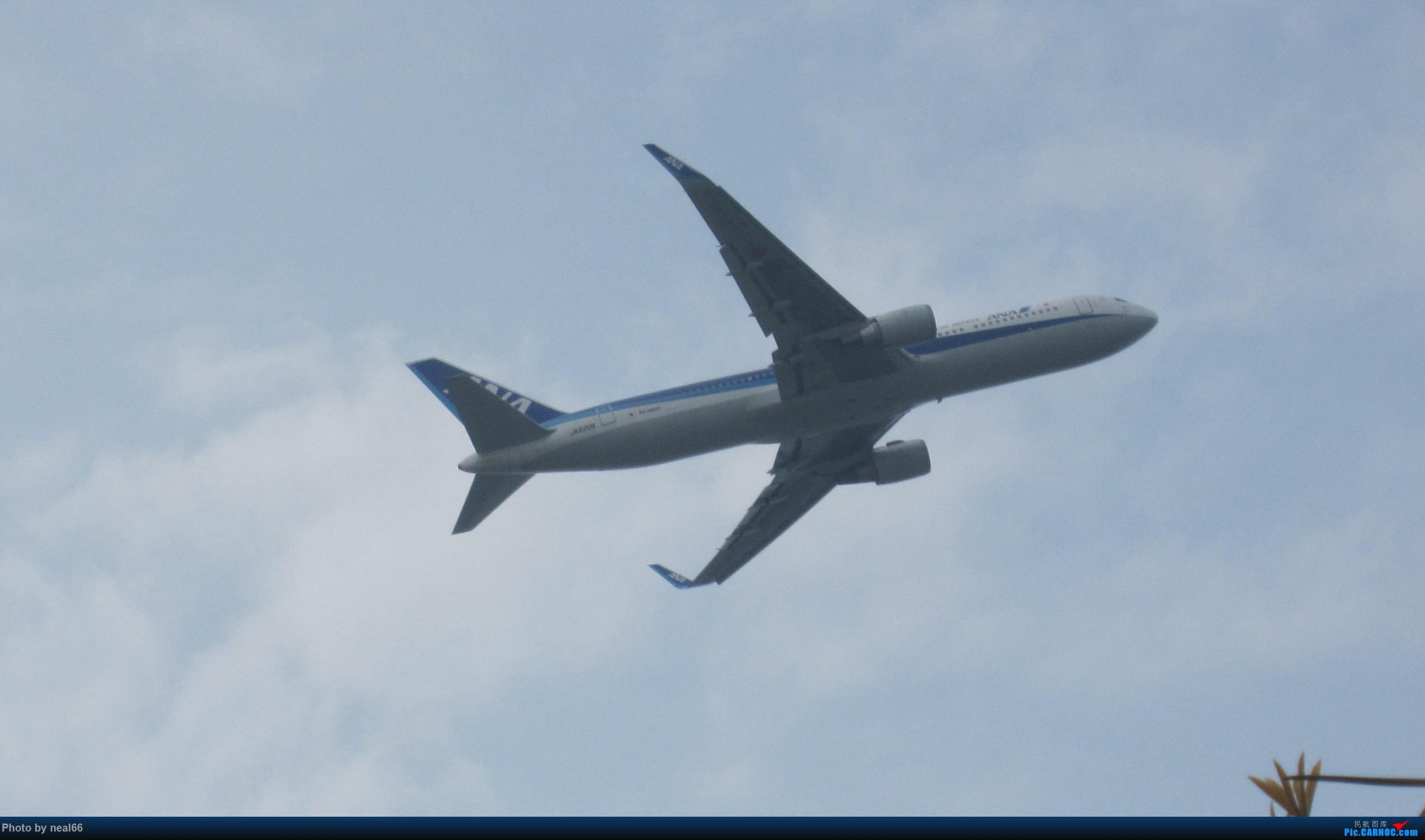 厦门周末拍机 BOEING 767 JA620A 中国厦门高崎国际机场