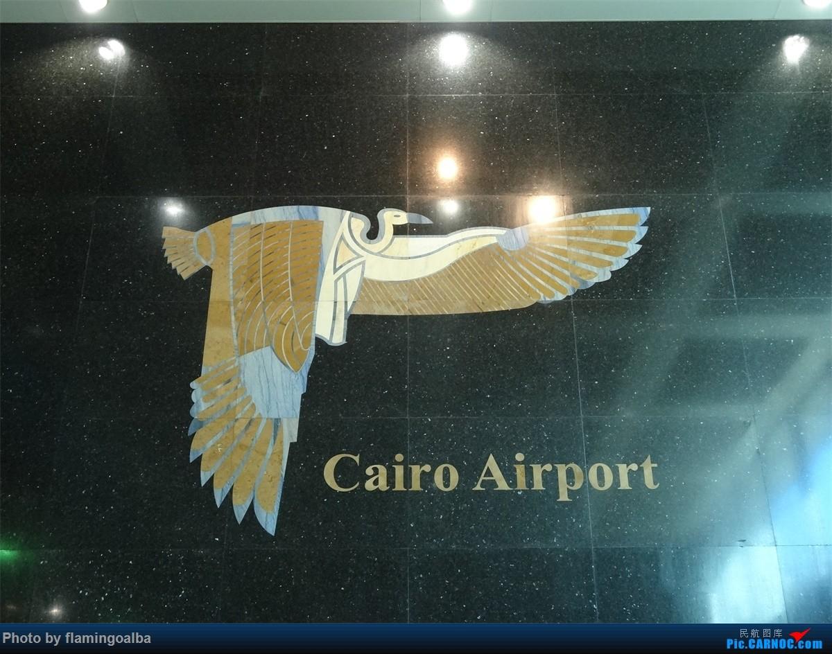 Re:开罗拍机补发