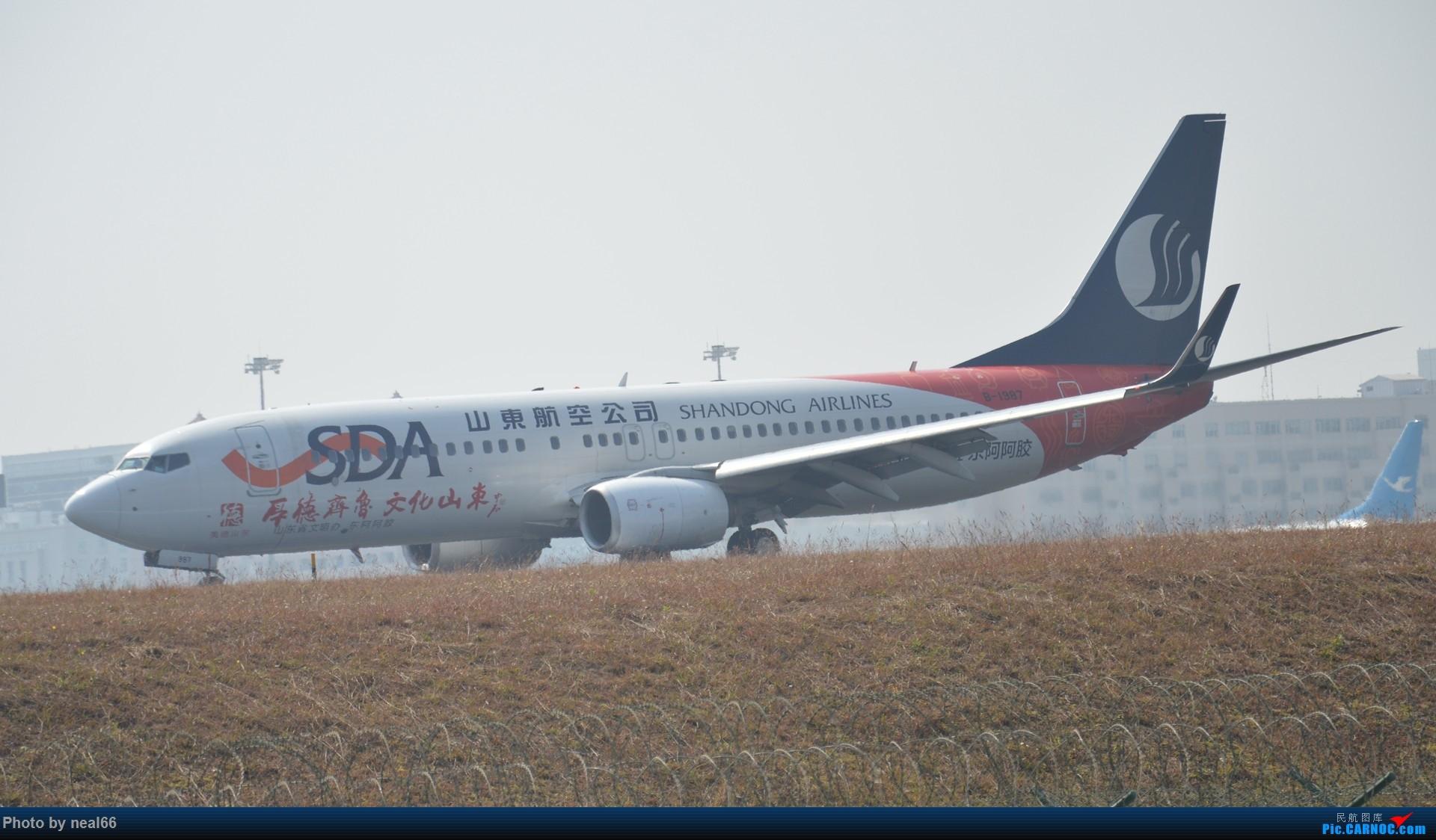 Re:[原创]厦门机场拍机 BOEING 737-800 B-1987 中国厦门高崎国际机场