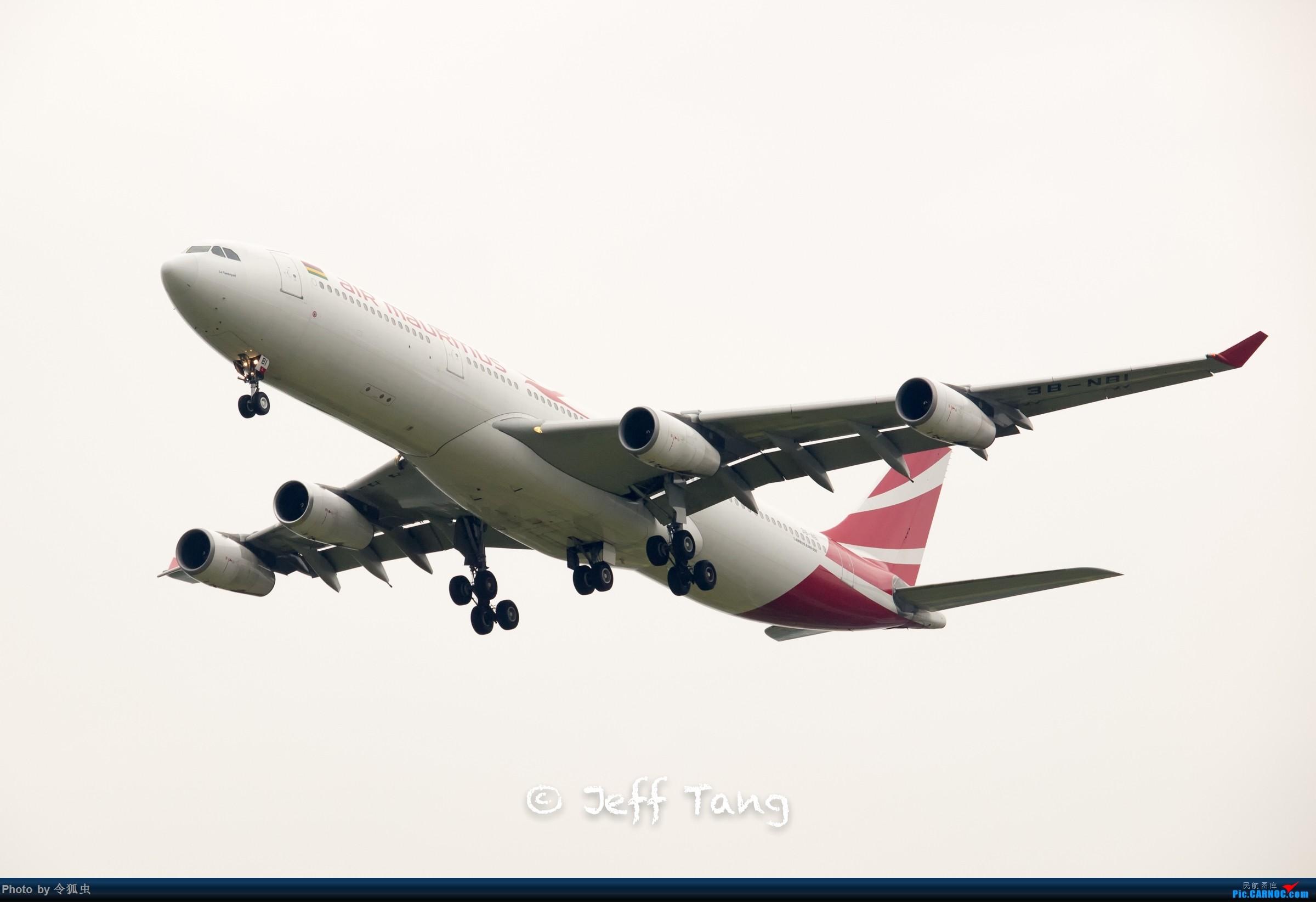 【CTU】毛球航3B-NBI_A333 AIRBUS A340-300 3B-NBI 中国成都双流国际机场