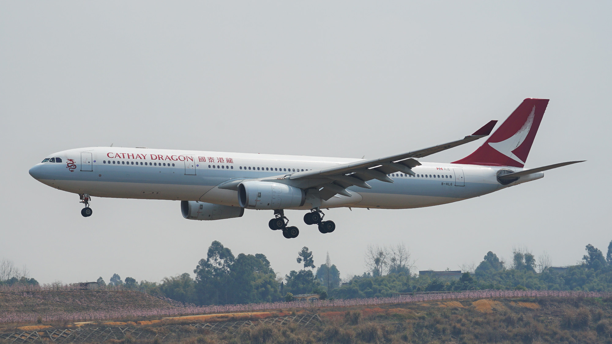 Re:[原创][CTU]2017.3.20春分拍机 AIRBUS A330-300 B-HLG 中国成都双流国际机场