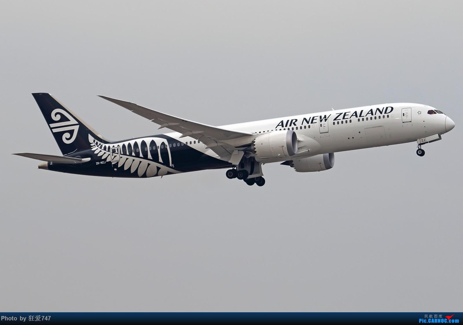 Re:[原创]魔都解决有无系列 BOEING 787-9 ZK-NZJ 中国上海浦东国际机场