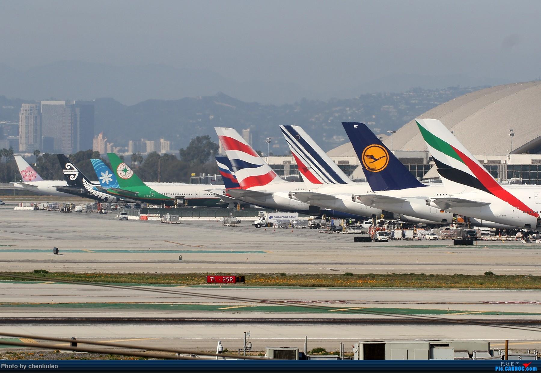 Re:[原创]【北美飞友会】全日空星球大战BB-8黄昏中降落LAX 以及一些杂图 BOEING 737-800 N8683D 美国洛杉矶机场 美国洛杉矶机场