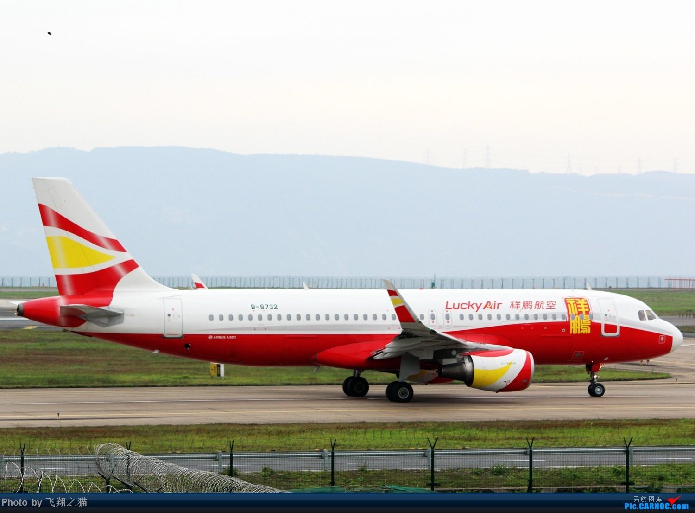 Re:[原创]CKG拍机(3月杂图一组) AIRBUS A320-200 B-8732 重庆江北国际机场