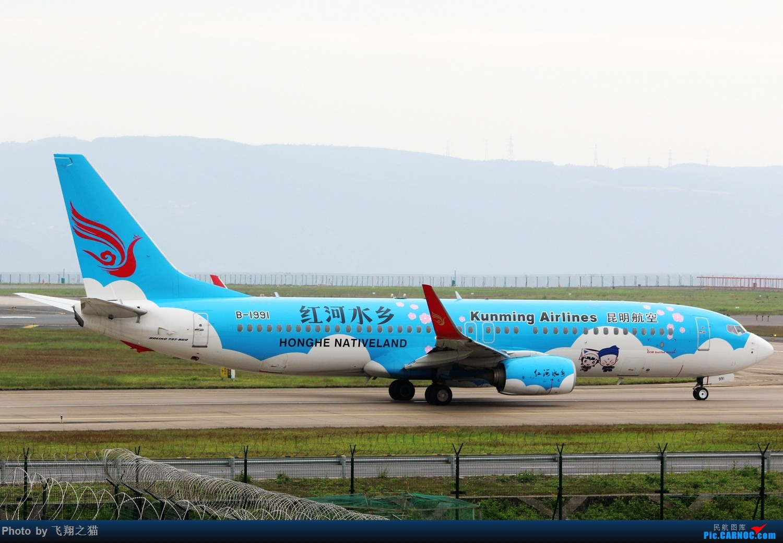 Re:CKG拍机(3月杂图一组) BOEING 737-800 B-1991 重庆江北国际机场