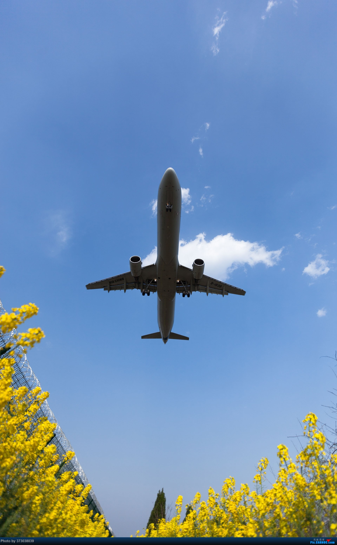 Re:[原创]【杭州飞友会】HGH油菜花里射大鸟,放上一只三角翼风筝 AIRBUS A321-200 B-1638 中国杭州萧山国际机场