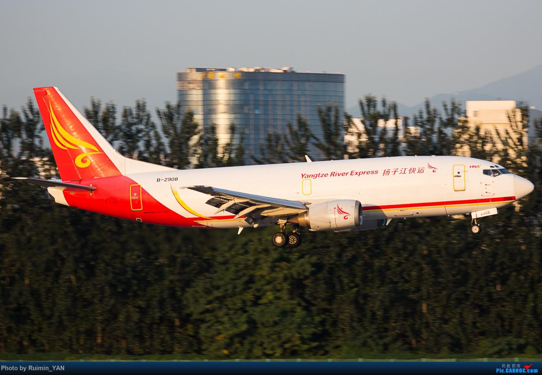 [原创]【PEK】【卡狗】扬子江快运(Y8,Yangtze River Express) B-2908 733F BOEING 737-300 B-2908 中国北京首都国际机场