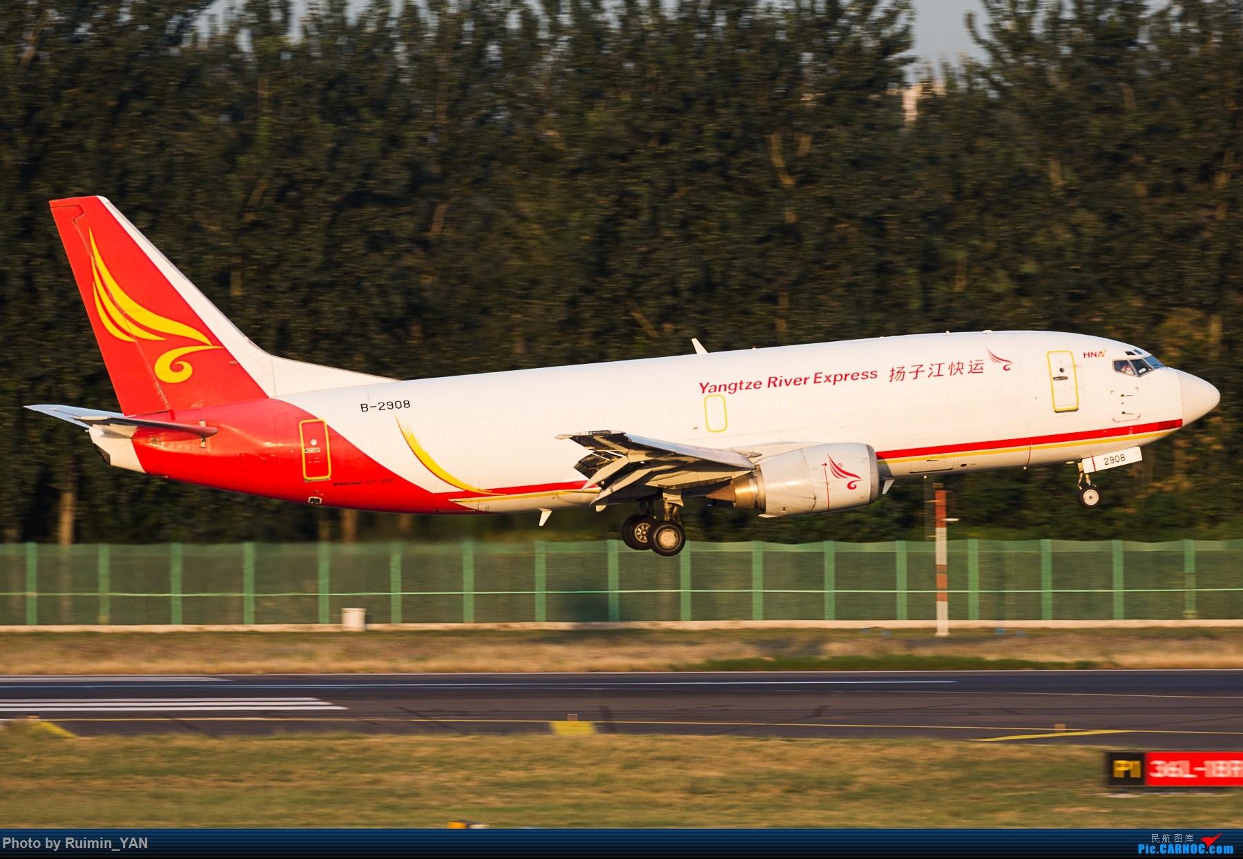 Re:[原创]【PEK】扬子江快运(Y8,Yangtze River Express) B-2908 733F BOEING 737-300 B-2908 中国北京首都国际机场