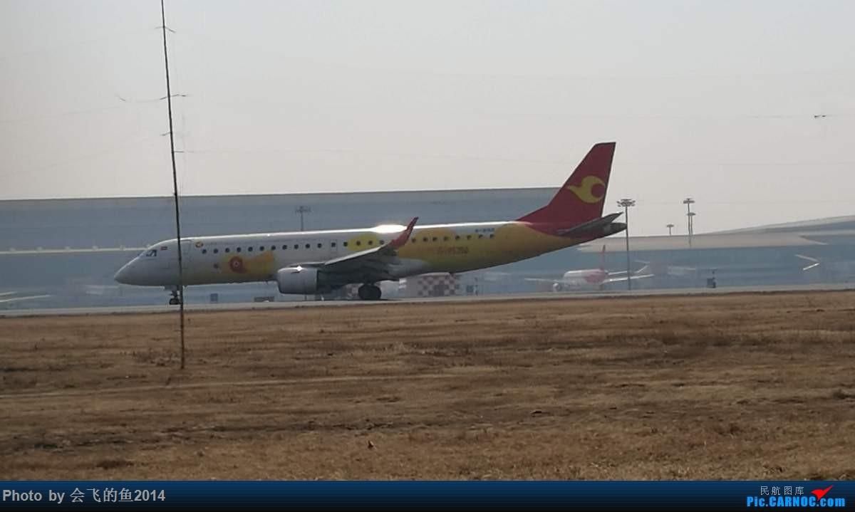 Re:[原创]2017年3月桃仙机场拍机,空军歼11护航志愿军烈士回家 E190