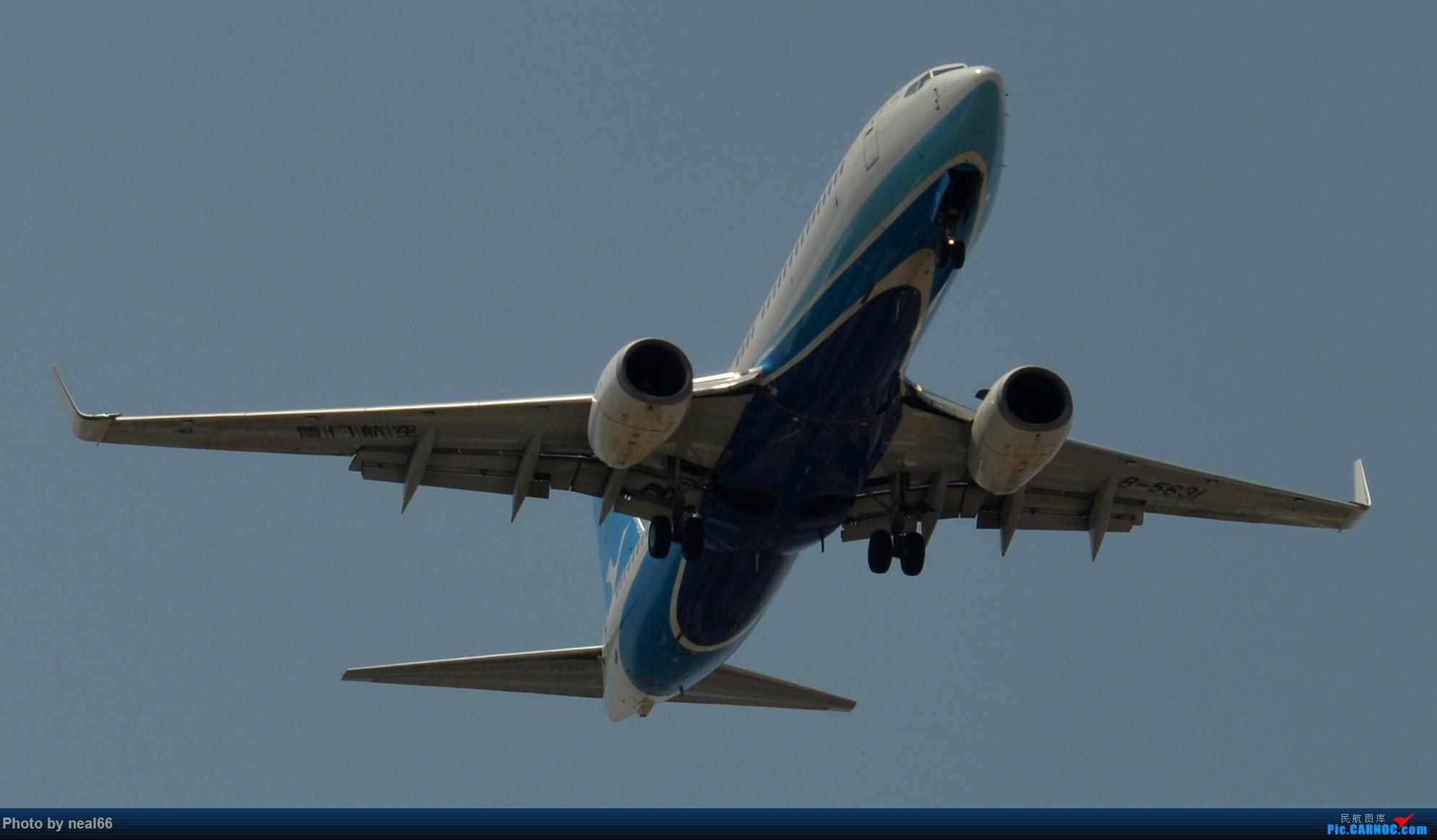 Re:[原创]好天气,试几张 BOEING 737-800 B-5631 中国厦门高崎国际机场