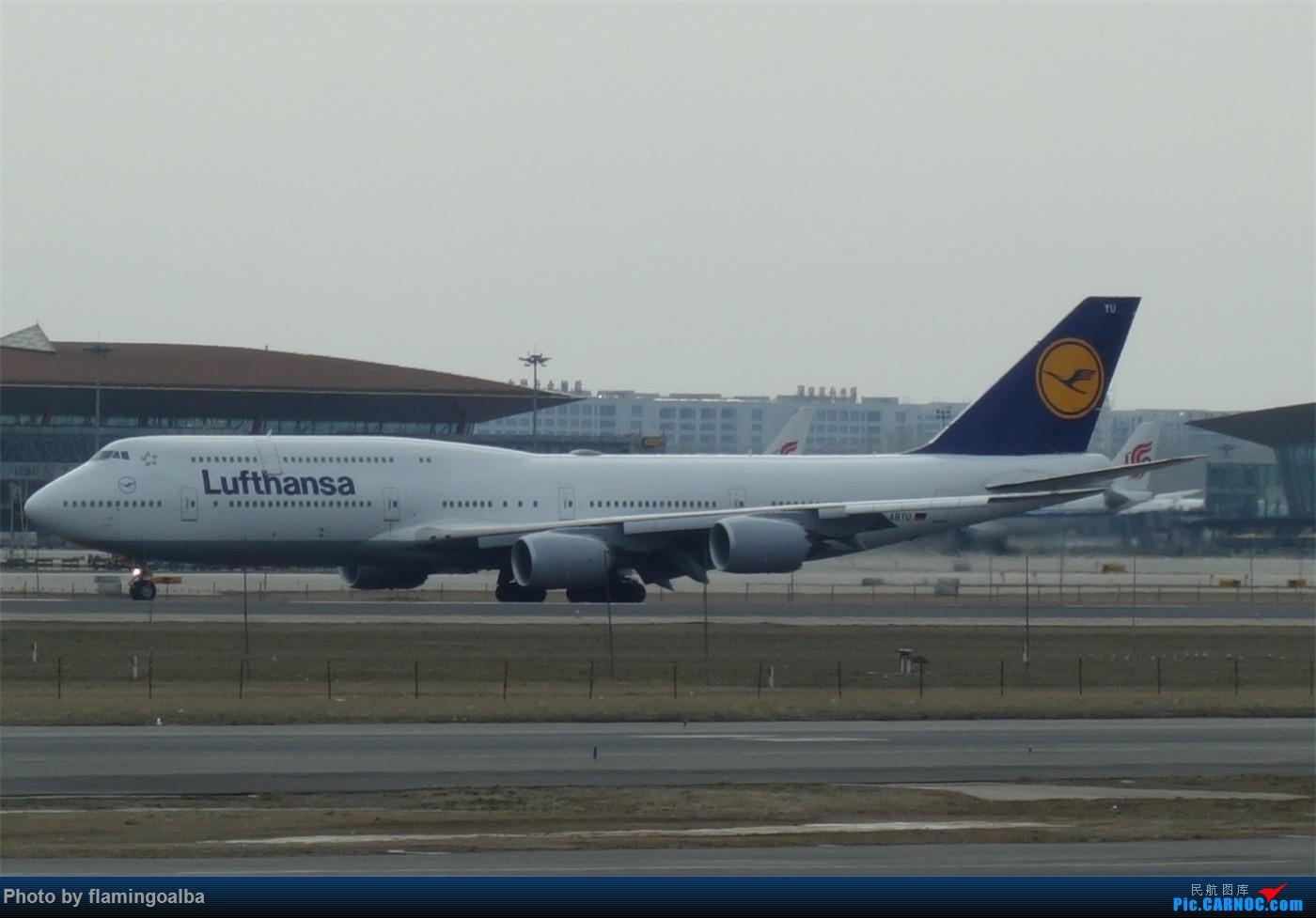 Re:[原创]NKG-PEK拍机 B747-8I D-ABYU 中国北京首都国际机场