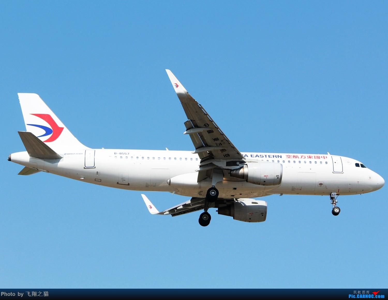 Re:[原创]CKG拍机(天气晴朗,搞着,搞着!) AIRBUS A320-200 B-8557 重庆江北国际机场
