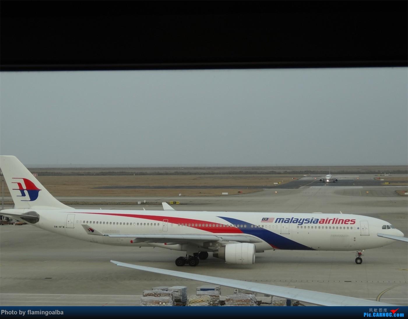[原创]浦东-达拉斯-纽瓦克-华盛顿里根-拉斯维加斯-洛杉矶-达拉斯-浦东 A330-300 9M-MTM 中国上海浦东国际机场