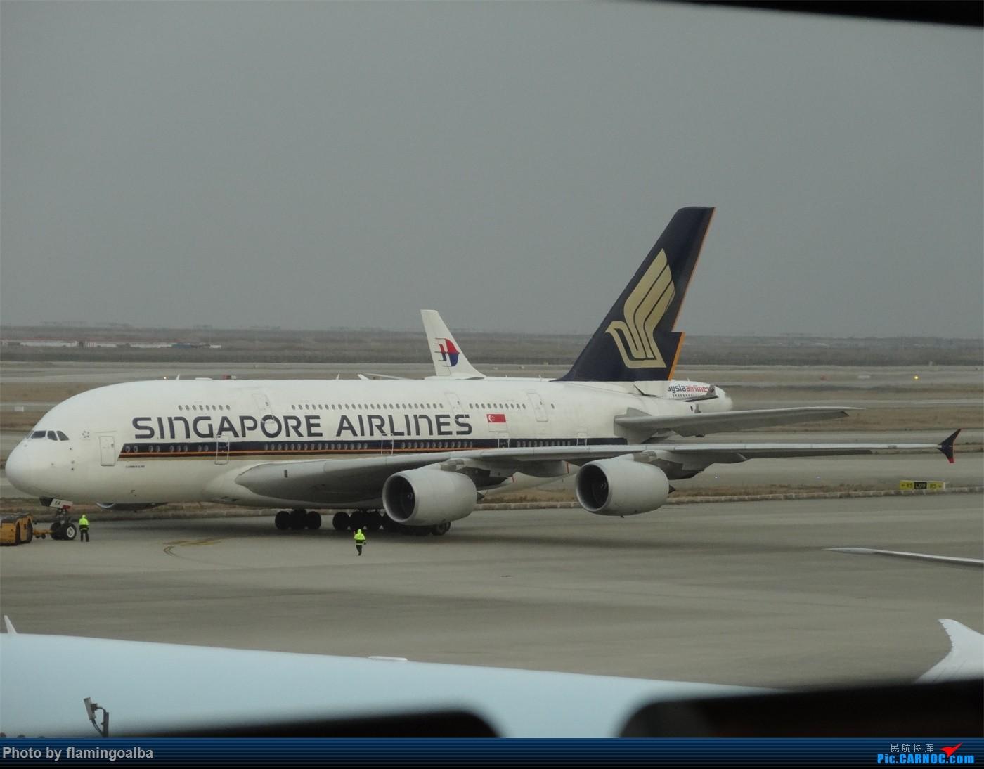 [原创]浦东-达拉斯-纽瓦克-华盛顿里根-拉斯维加斯-洛杉矶-达拉斯-浦东 A380-800 没拍到 中国上海浦东国际机场