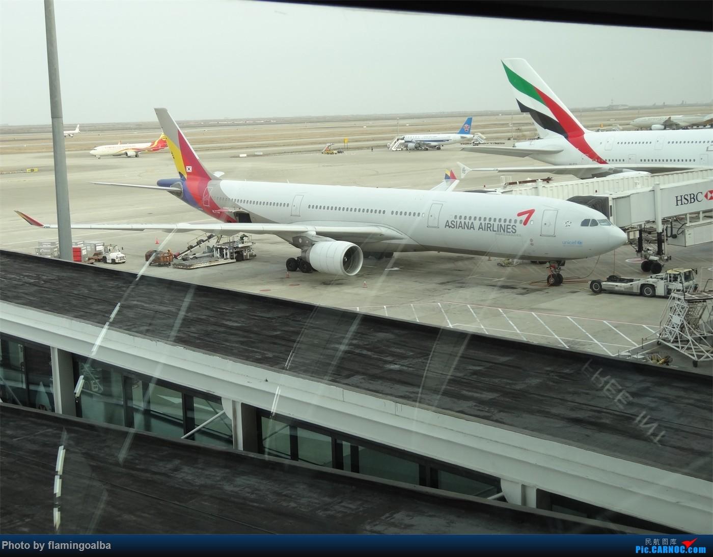 Re:[原创]浦东-达拉斯-纽瓦克-华盛顿里根-拉斯维加斯-洛杉矶-达拉斯-浦东 A330-300 HL-7795 中国上海浦东国际机场
