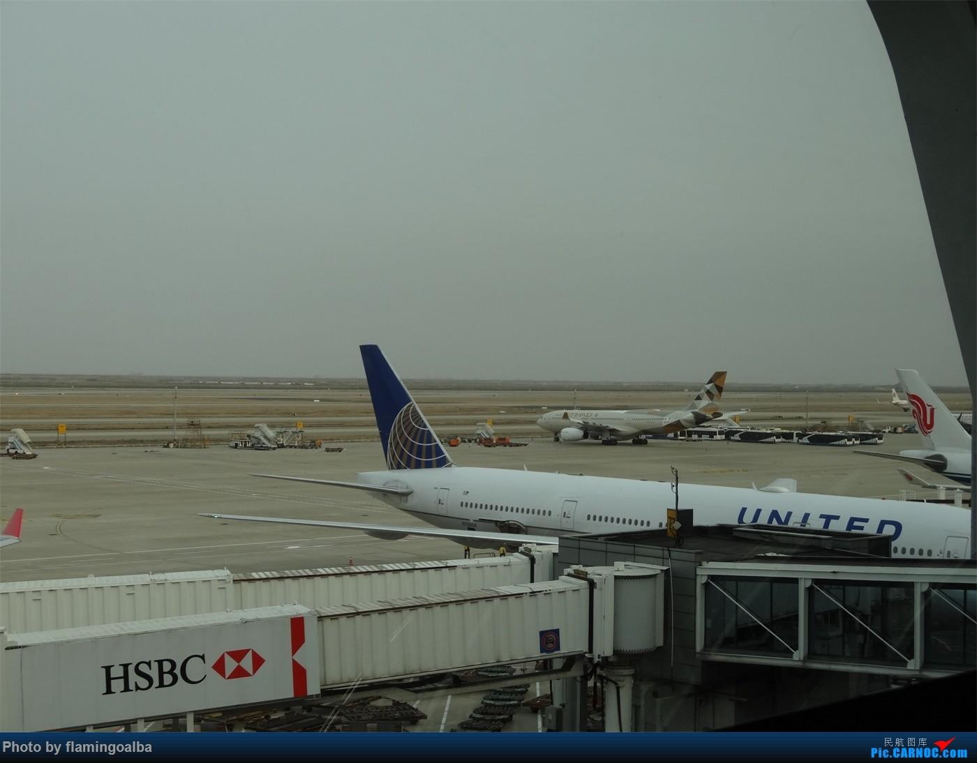 Re:[原创]浦东-达拉斯-纽瓦克-华盛顿里根-拉斯维加斯-洛杉矶-达拉斯-浦东 B777-200 N7-8004 中国上海浦东国际机场