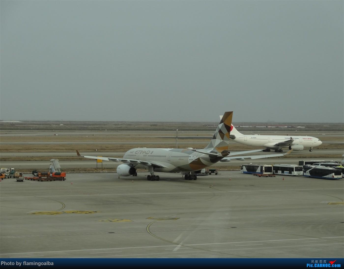 Re:[原创]浦东-达拉斯-纽瓦克-华盛顿里根-拉斯维加斯-洛杉矶-达拉斯-浦东 A330-200 A6-EYD 中国上海浦东国际机场