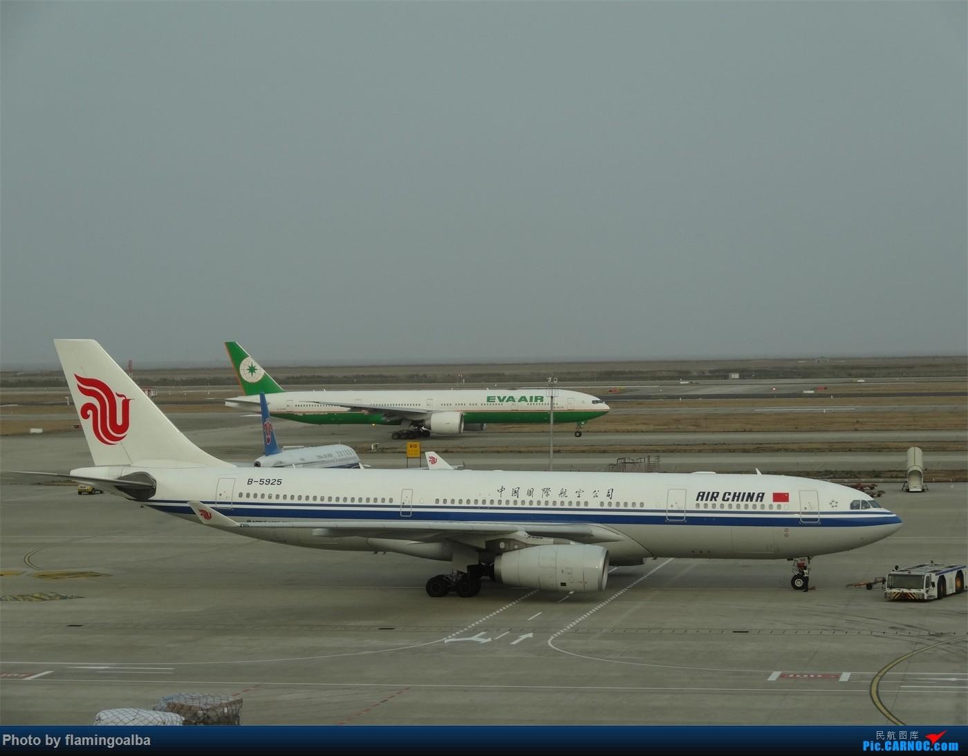 Re:[原创]浦东-达拉斯-纽瓦克-华盛顿里根-拉斯维加斯-洛杉矶-达拉斯-浦东 AIRBUS A330-200 B-5925 中国上海浦东国际机场