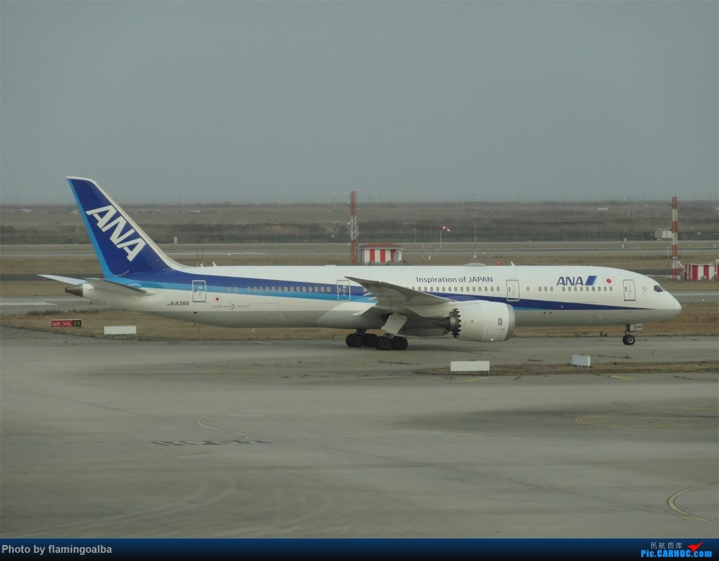 Re:[原创]浦东-达拉斯-纽瓦克-华盛顿里根-拉斯维加斯-洛杉矶-达拉斯-浦东 B787-9 JA 836A 中国上海浦东国际机场