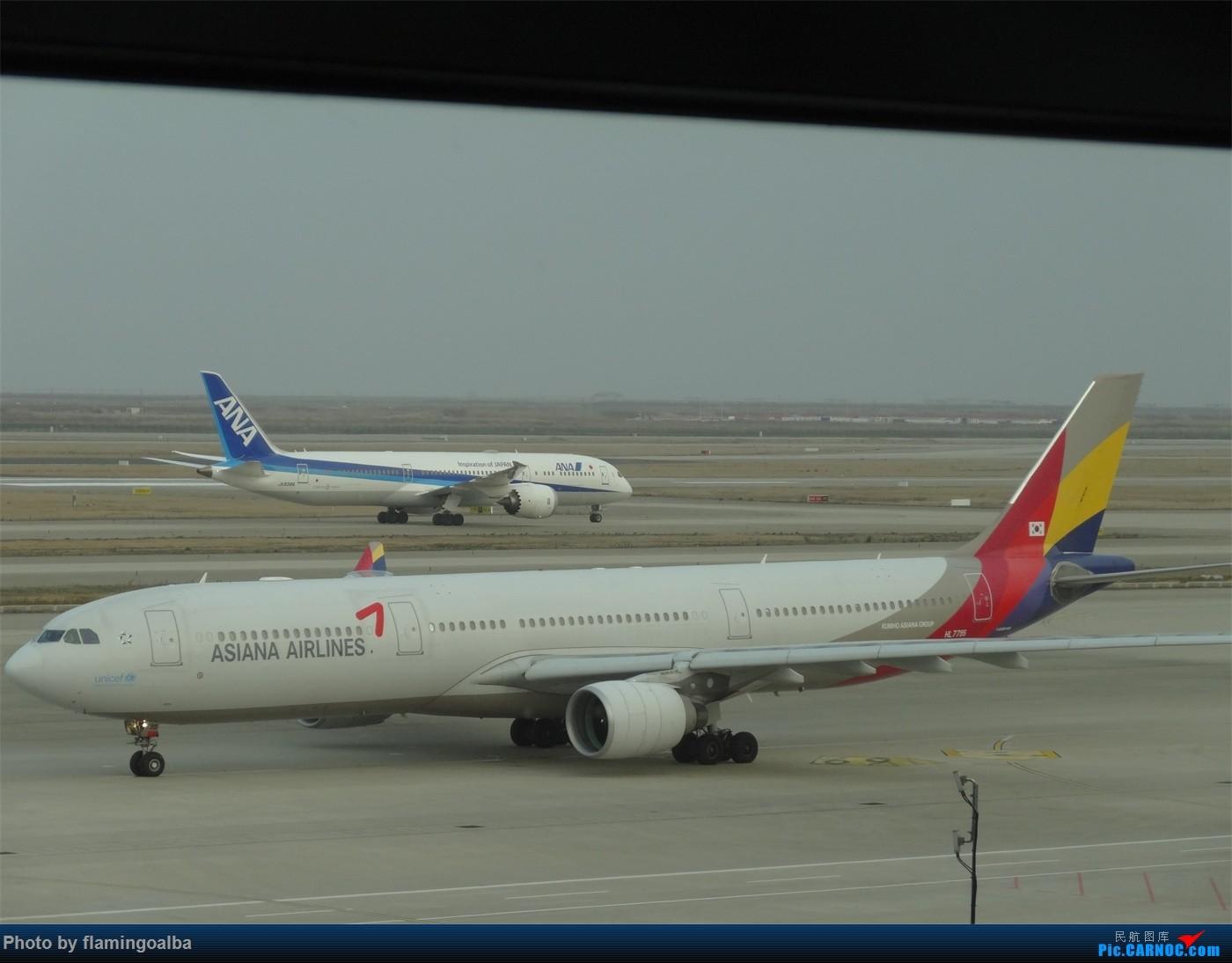 Re:[原创]浦东-达拉斯-纽瓦克-华盛顿里根-拉斯维加斯-洛杉矶-达拉斯-浦东 A330-300  中国上海浦东国际机场