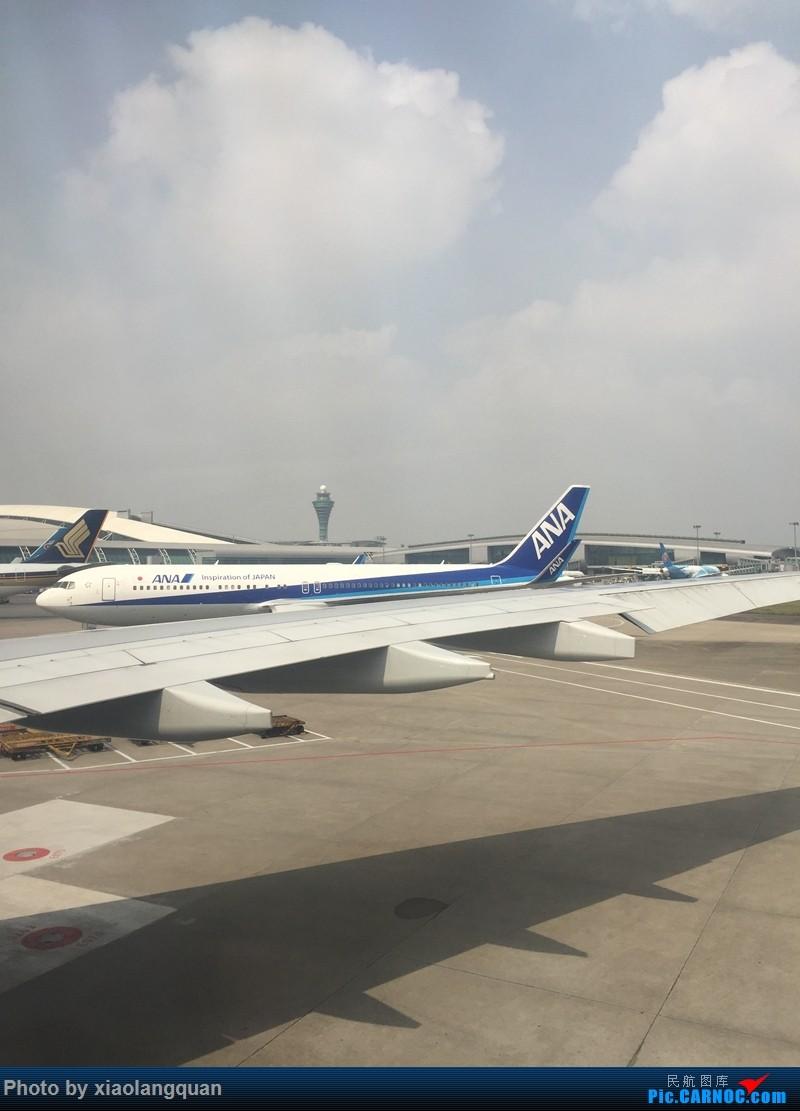 Re:2月底劳累的韩国行,去程大韩333,回程南航321. BOEING 767-300  中国广州白云国际机场