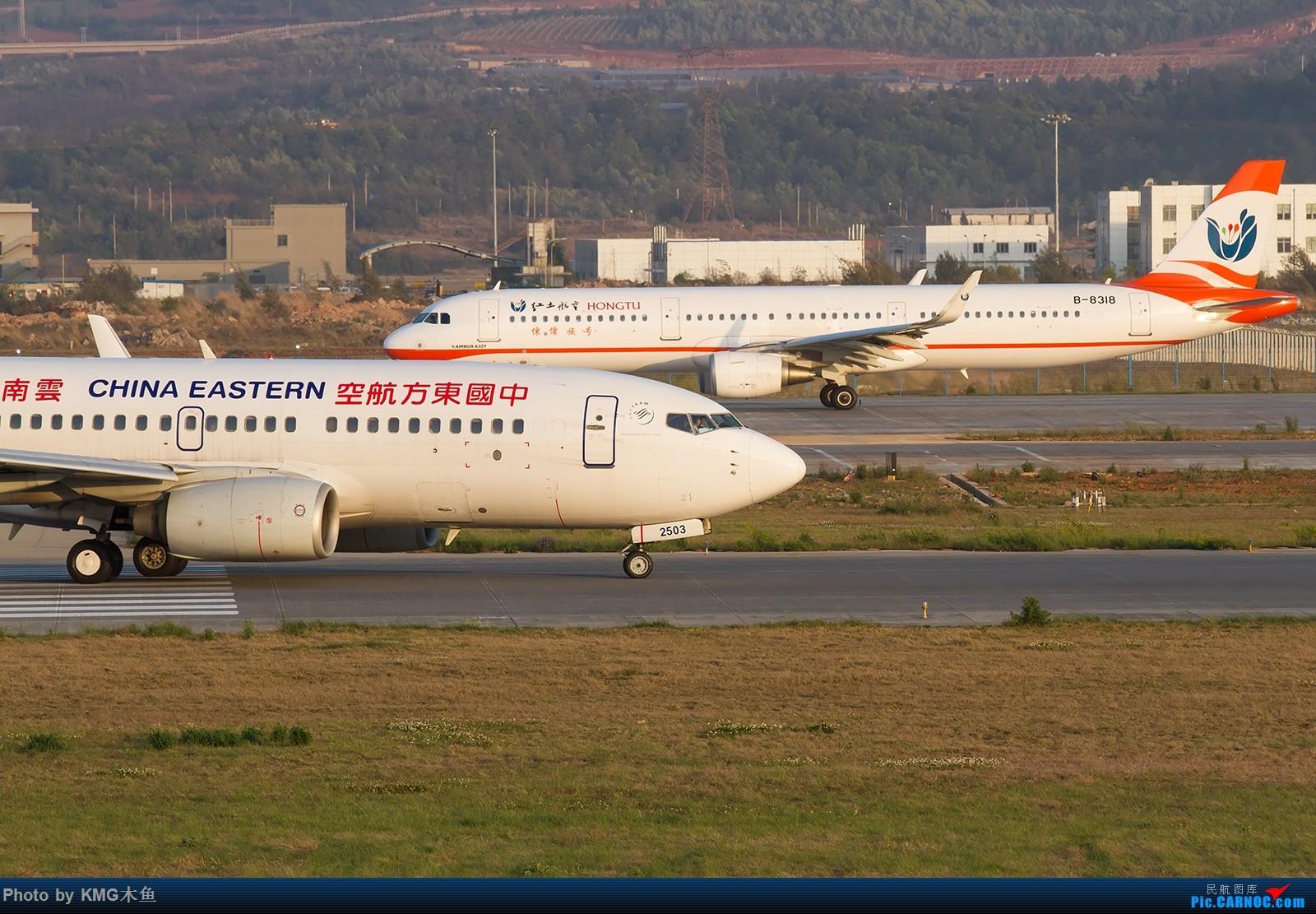 Re:[原创]【2017昆明长水国际机场——KMG木鱼拍机】今年第二次发帖,老样子,老机型,老位置,老图新发 BOEING 737-700 B-2503 中国昆明长水国际机场