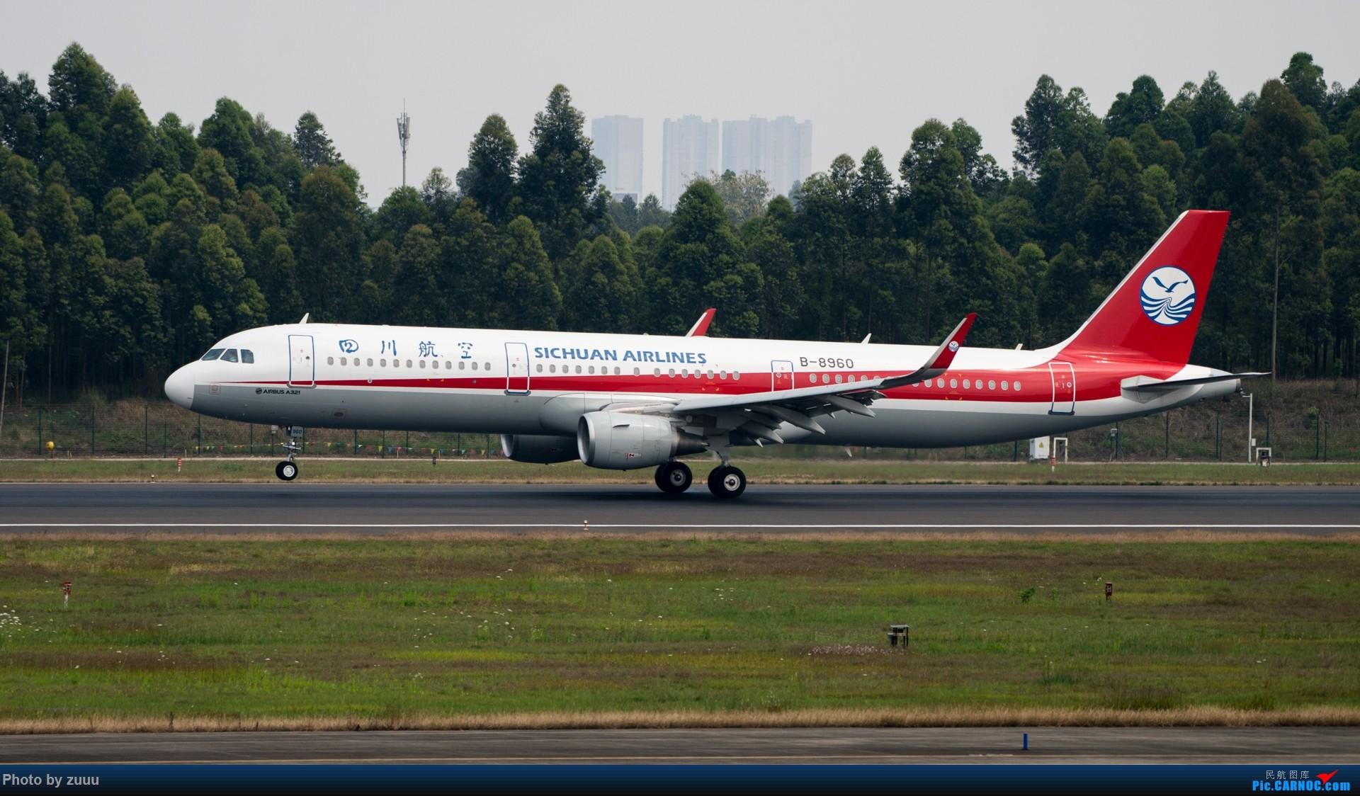[原创]2017.4.30 CTU 3U合集 AIRBUS A321-200 B-8960 中国成都双流国际机场