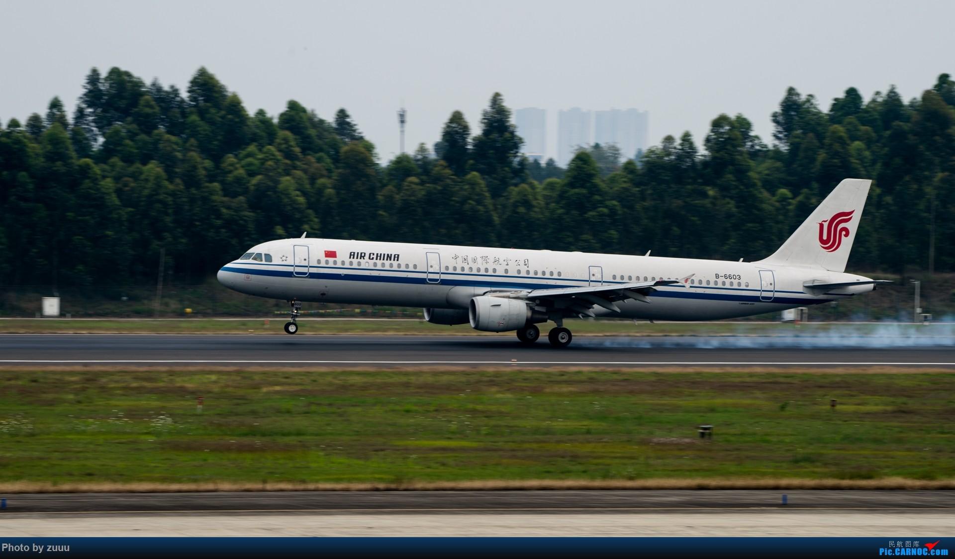 Re:[原创]2017.4.30 CTU 拍飞机 AIRBUS A321-200 B-6603 中国成都双流国际机场