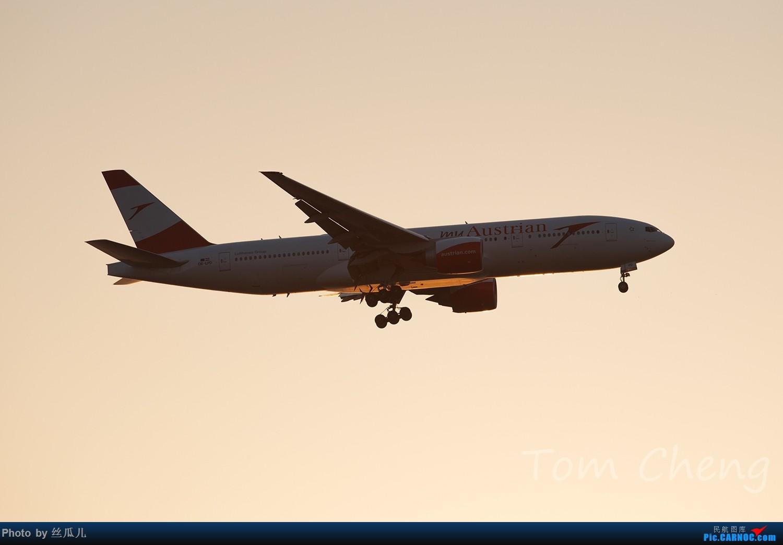 【徘徊在HGH的丝瓜】PVG清晨5:30随拍......柔美的晨曦,忙碌的空港,安静的小花,亢奋的飞友......还有一尊乱入的大神