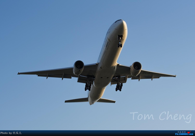 Re:[原创]【徘徊在HGH的丝瓜】PVG清晨5:30随拍......柔美的晨曦,忙碌的空港,安静的小花,亢奋的飞友......还有一尊乱入的大神
