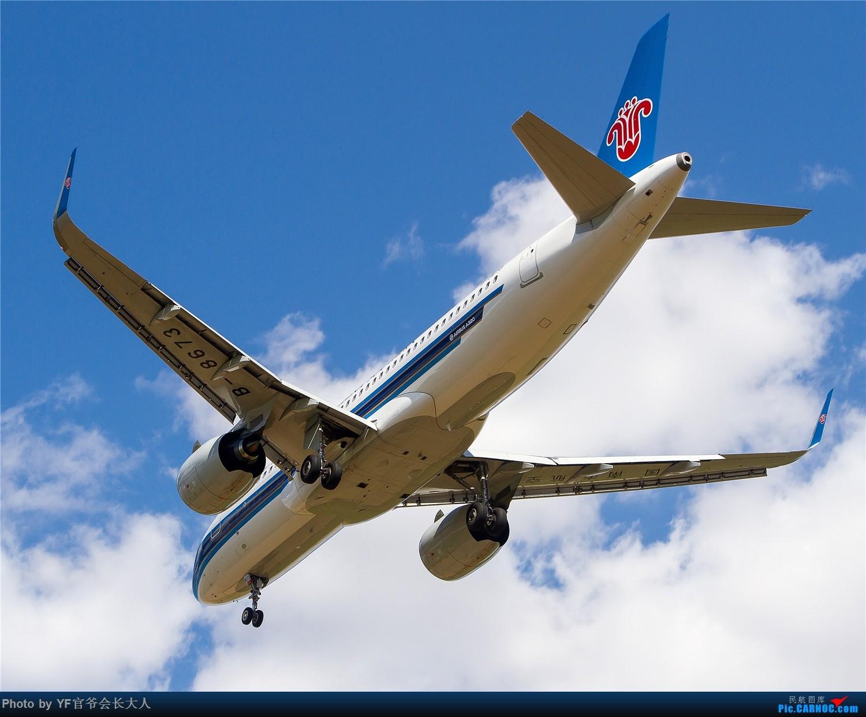 [原创]【ZYTX】四月份总结,惊喜不少 AIRBUS A320NEO B-8673 中国沈阳桃仙国际机场