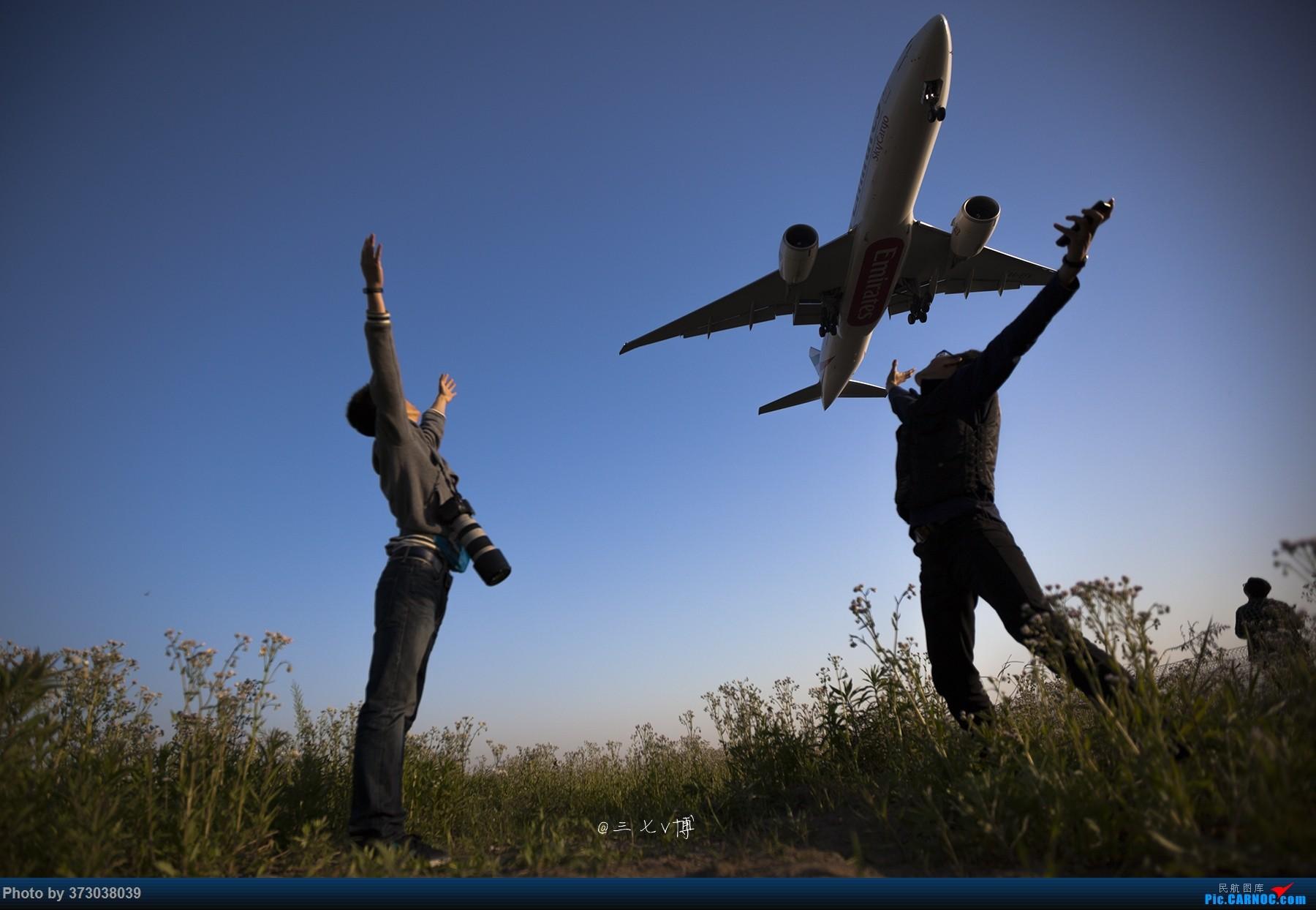Re:[原创]【徘徊在HGH的丝瓜】PVG清晨5:30随拍......柔美的晨曦,忙碌的空港,安静的小花,亢奋的飞友......还有一尊乱入的大神    中国上海浦东国际机场 CARNOC网友