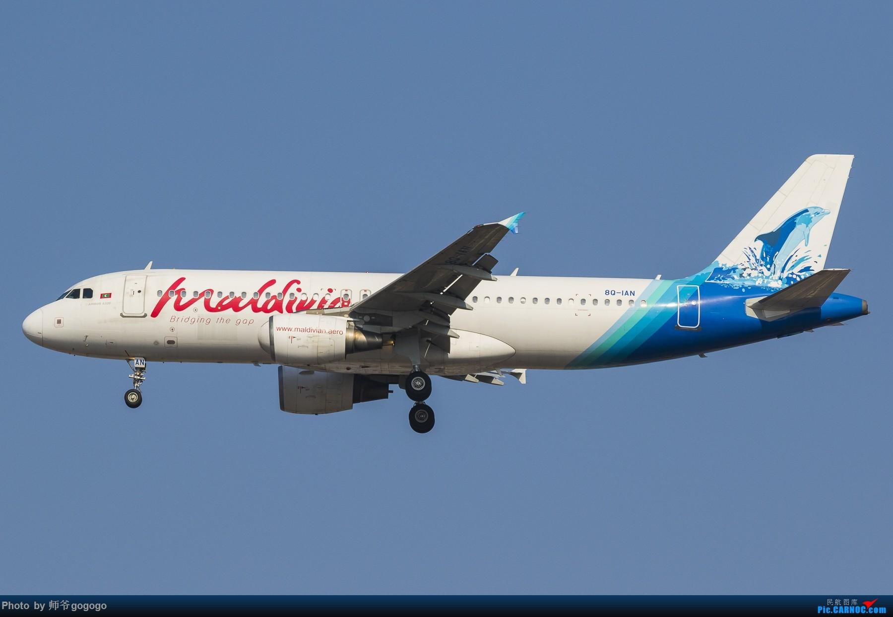 [原创]【一图党】马尔代夫国家航空的320 AIRBUS A320-200 8Q-IAN 中国重庆江北国际机场