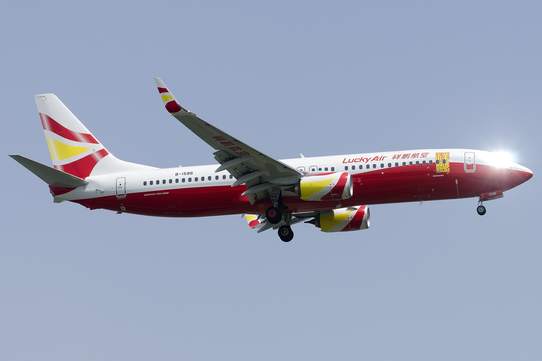 Re:[原创][原创]【SHA拍机*1800大图】4月拍的了,记得那天好货还挺多 BOEING 737-800 B-1586 中国上海虹桥国际机场