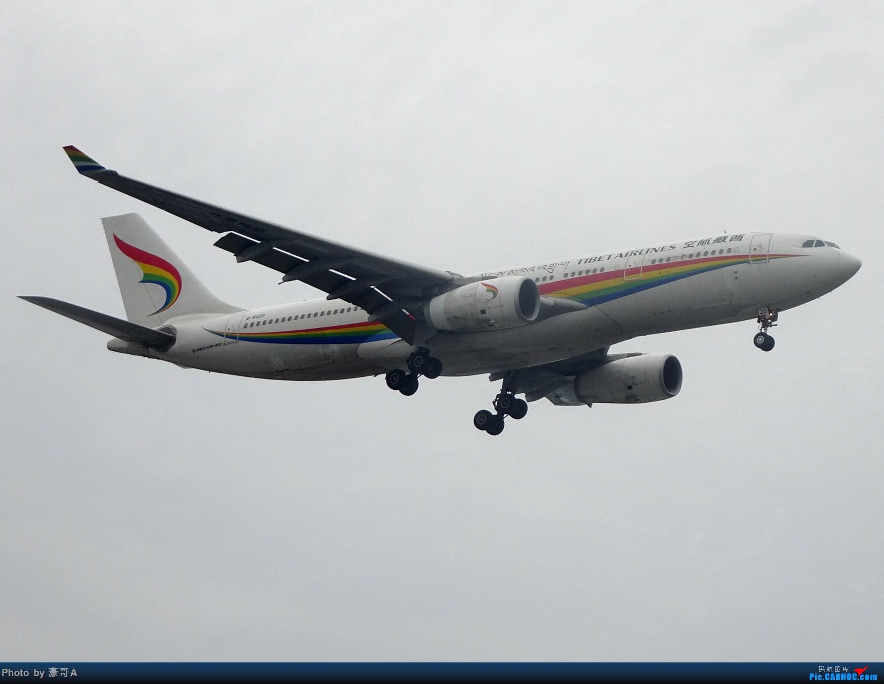 Re:[原创]SHA天气越来越烂 AIRBUS A330-200 B-8420 中国上海虹桥国际机场