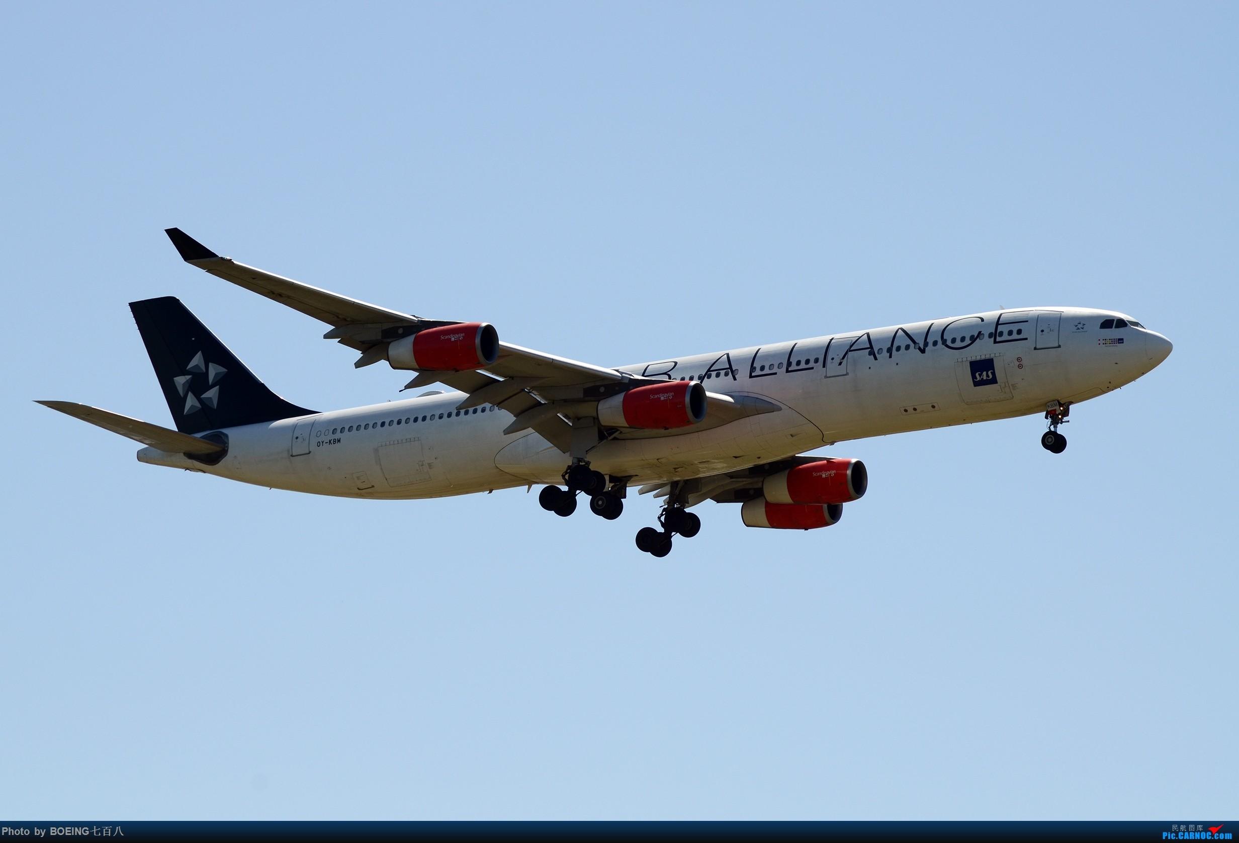 Re:好久没发作业了,5月13日的PEK AIRBUS A340-300 OY-KBM 中国北京首都国际机场