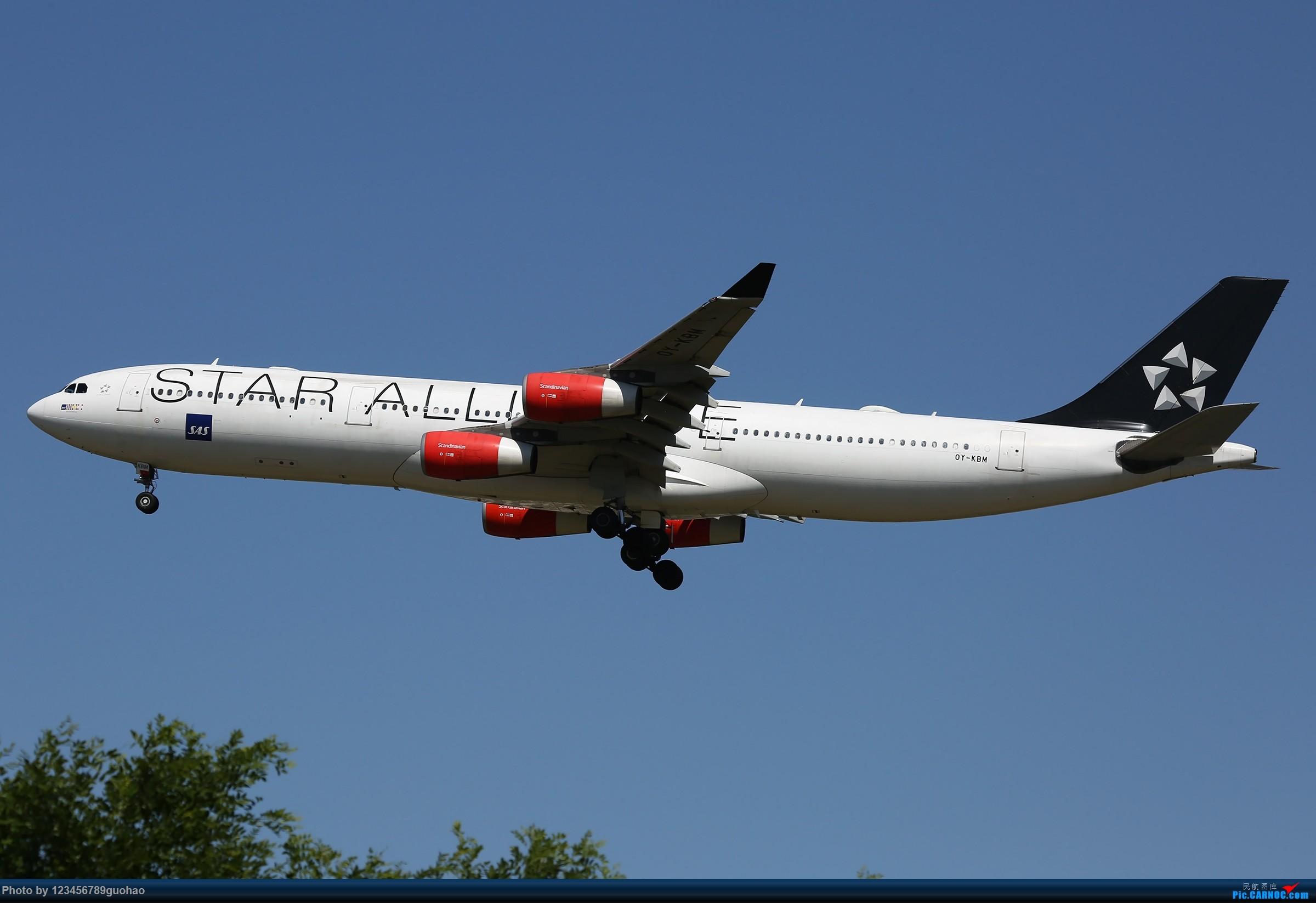 一图党-北欧大星星 AIRBUS A340-300 OY-KBM 北京首都国际机场