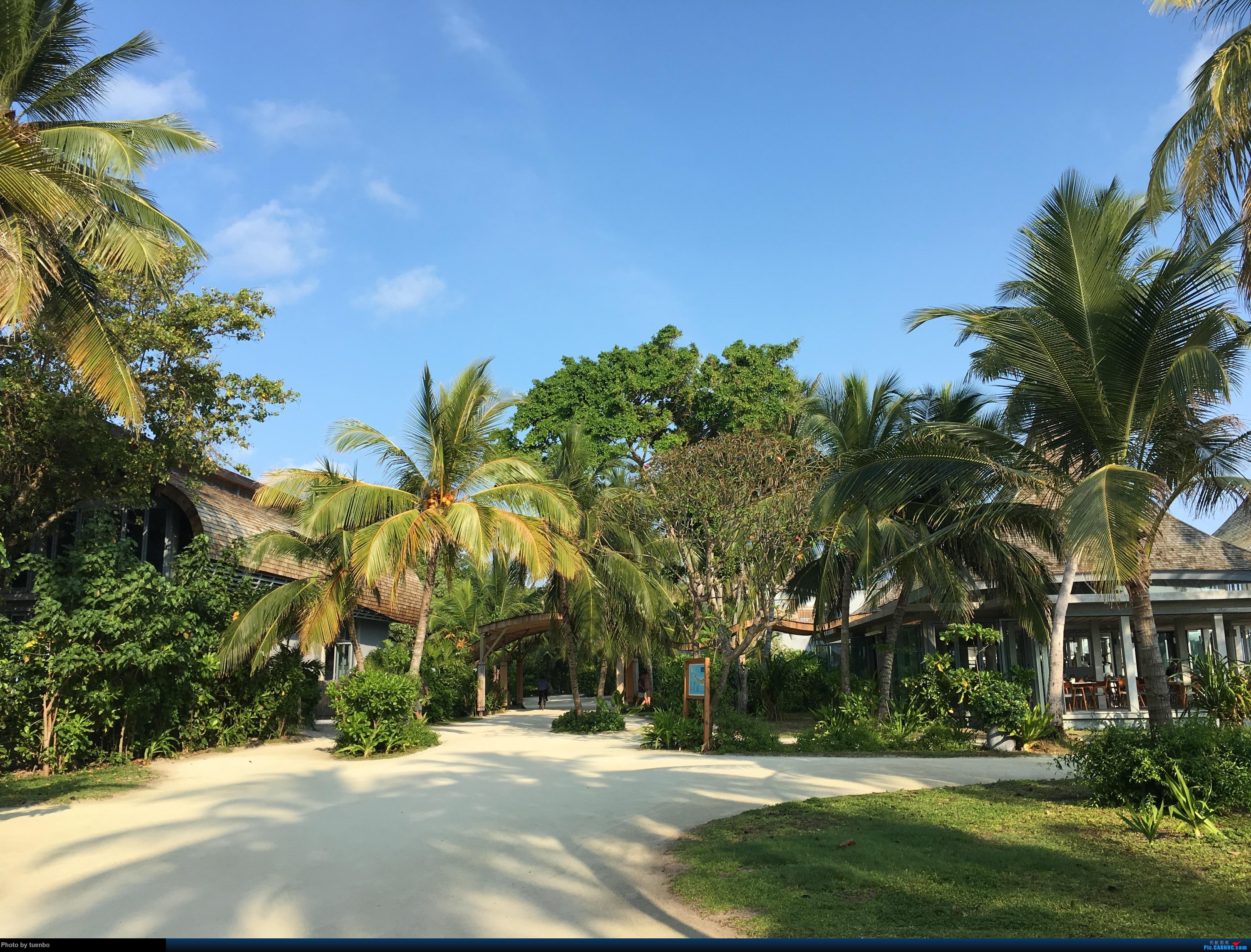 Re:[原创]马尔代夫之旅,难忘的美景