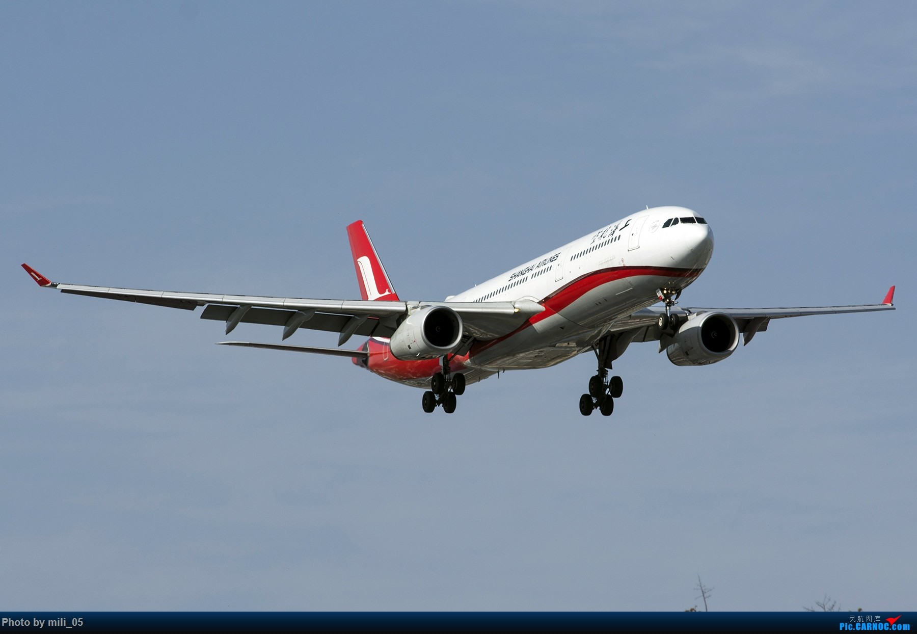 Re:[原创][SHA] A330飞机45度仰视系列 AIRBUS A330-300 B-6097 中国上海虹桥国际机场