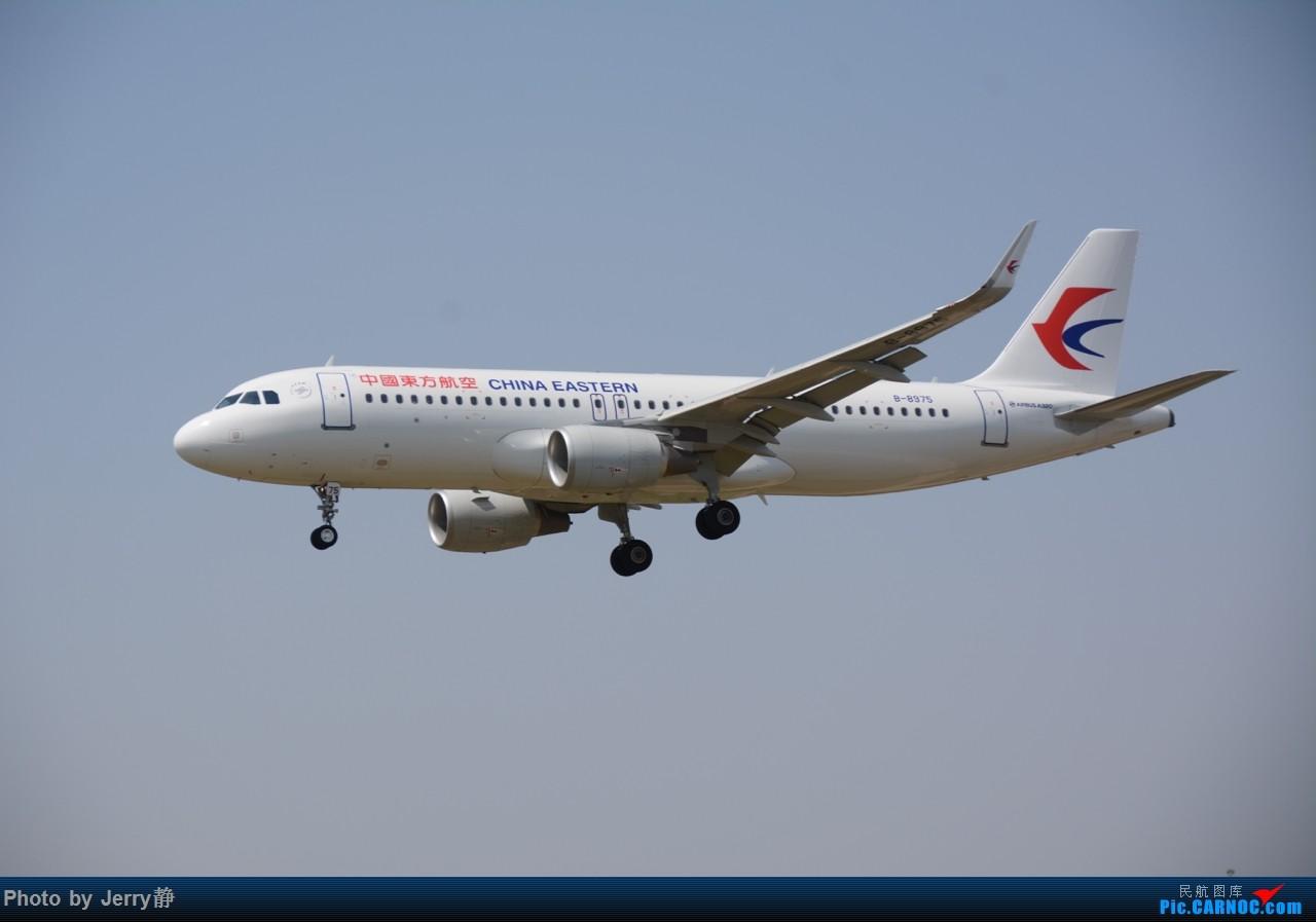 Re:[原创][SHE]5.3沈阳桃仙机场拍机,第一次拍到立荣 AIRBUS A320-200 B-8975
